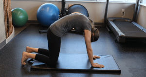 Cat-Cows (Cat Position) - Dockside Physiotherapy Victoria BC Exercise Database